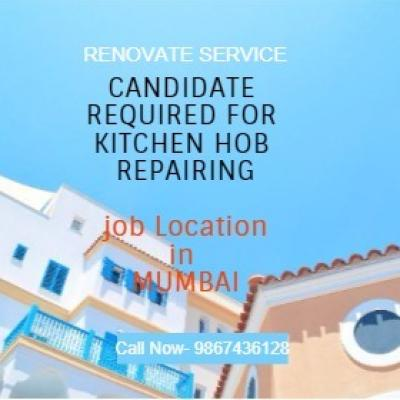 Renovate Services